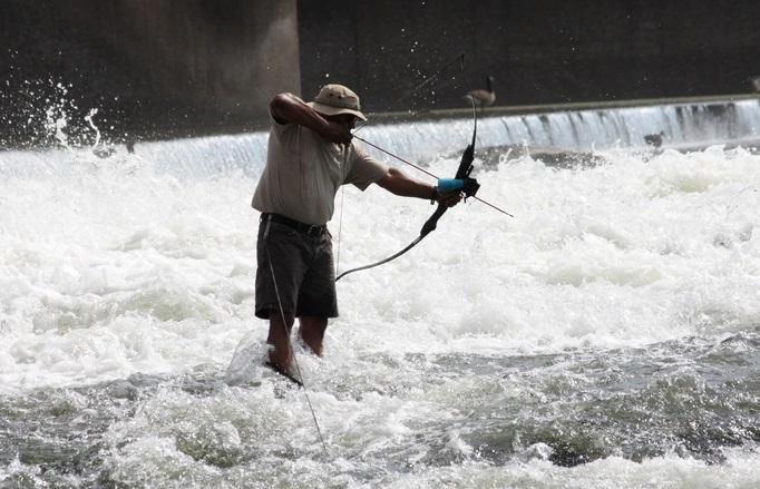 bowfishing bow reviews