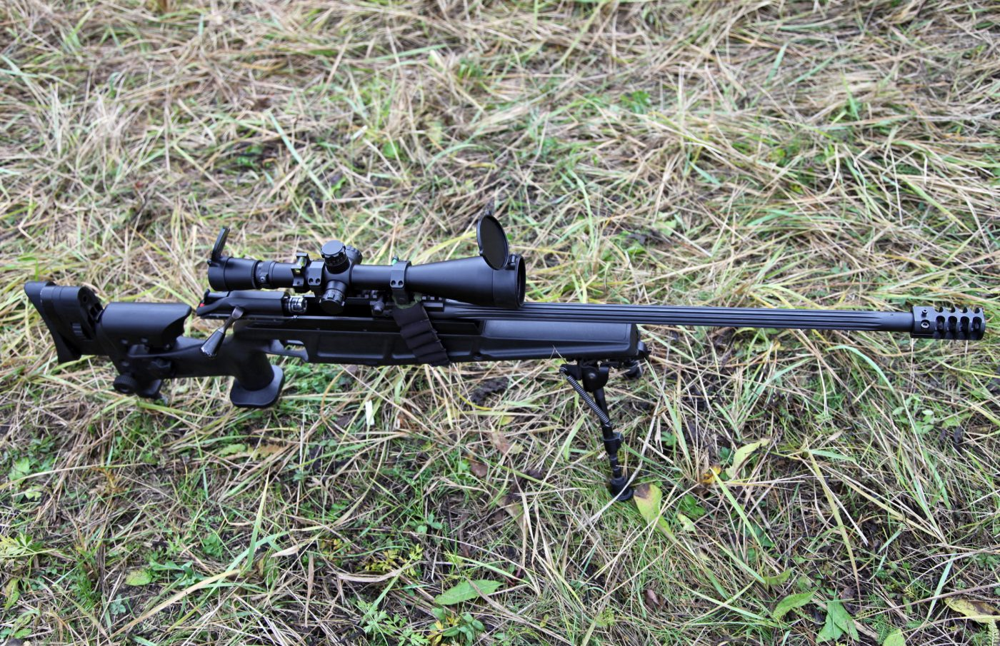 Best .308 Rifle for Less than $1,000 - Reviews and Guide ...