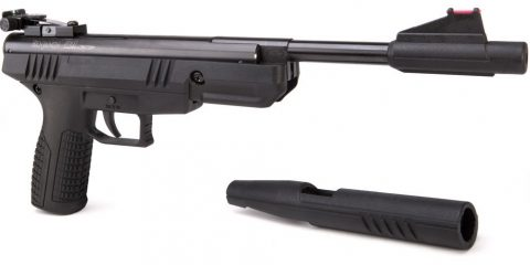best pellet gun for the money featured image